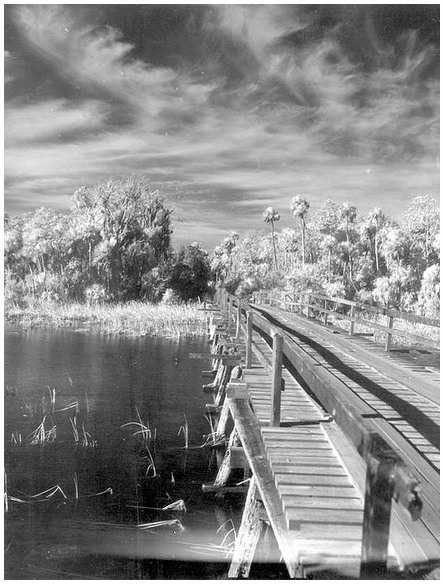 bridge-mystery-CC-Florida-Memory