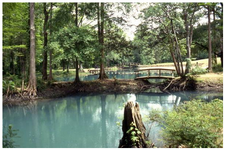 swimming-hole-CC-Florida-Memory